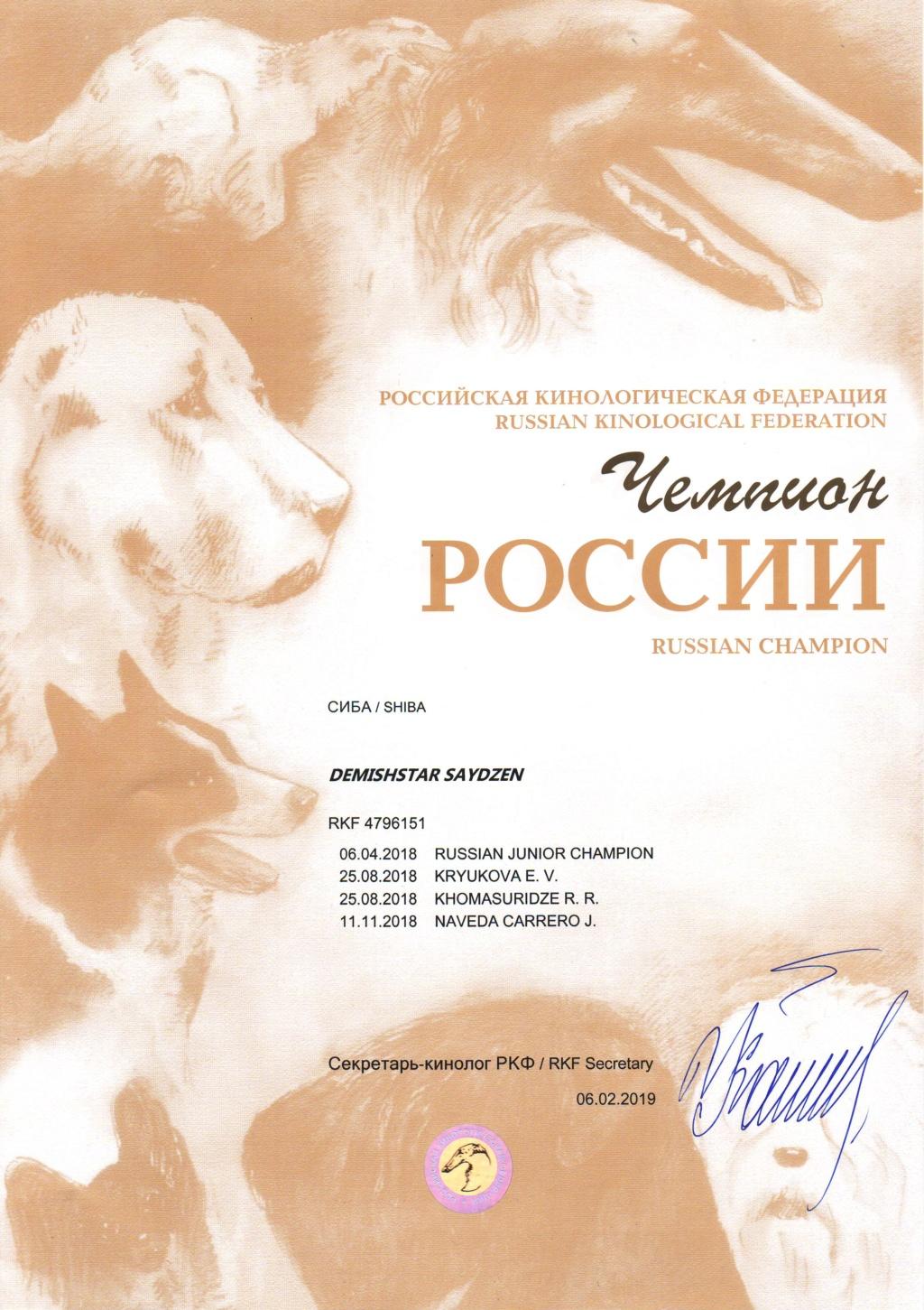 DEMISHSTAR SAYDZEN (Шмель) г. Москва Image012