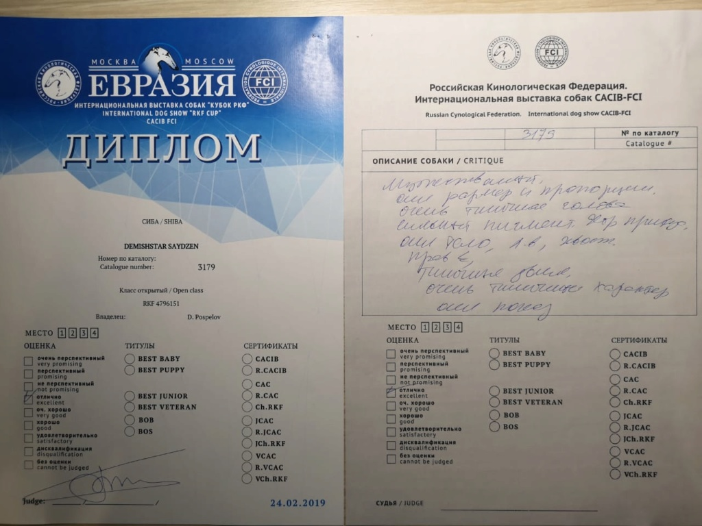 DEMISHSTAR SAYDZEN (Шмель) г. Москва Img-2018
