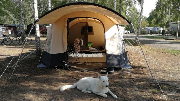 Obelink Shelter 6 TC 0ed6b210