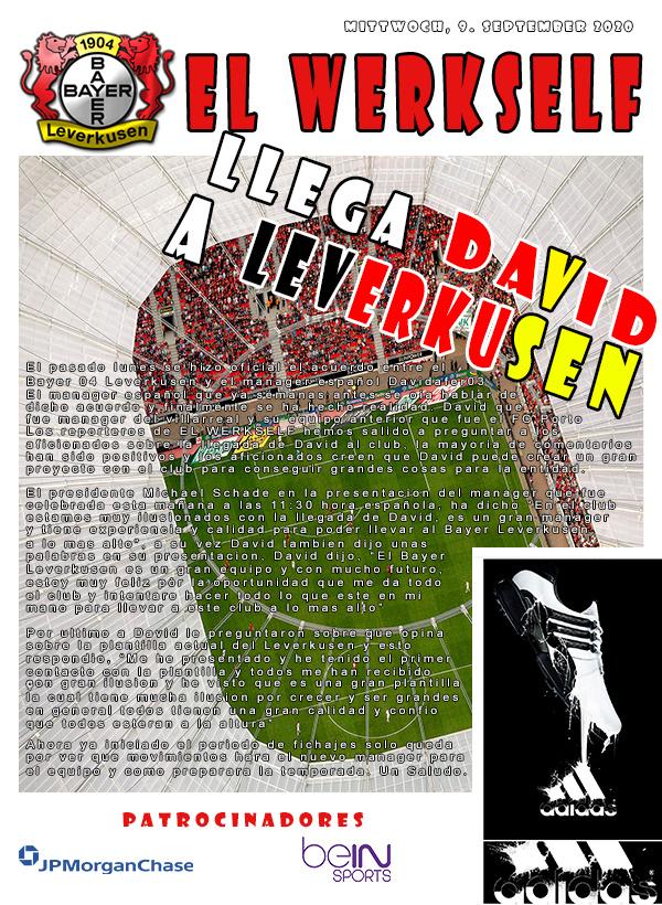 EL WERKSELF  Diario12