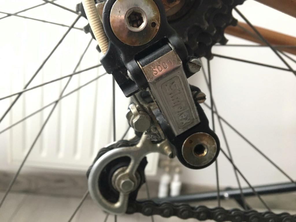 Vélo R. LAPEBIE , vous avez des infos ? (Galet dérailleur cassé) Whatsa11