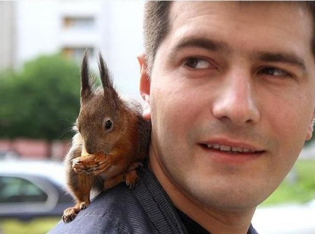 Le soldat et l'écureuil 02_yyc10