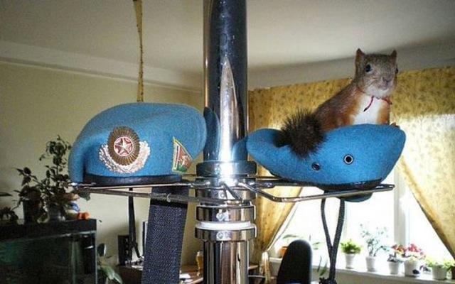 Le soldat et l'écureuil 05_yyc10