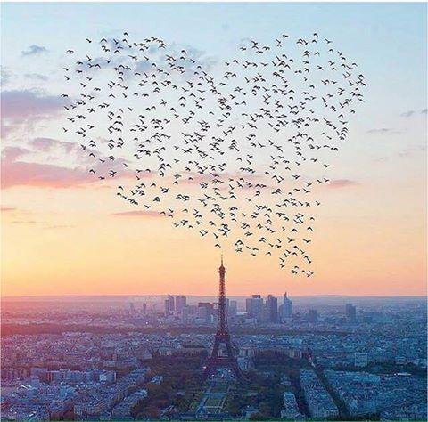 Paris 12108210
