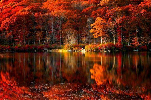Images d'automne  - Page 5 14368810