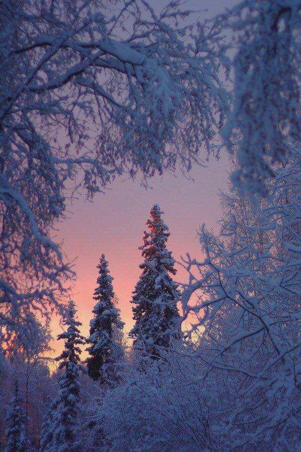 Images d'hiver - Page 3 24068010