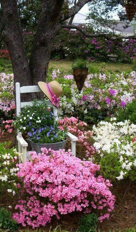 Photos de printemps/été - Page 14 36285110