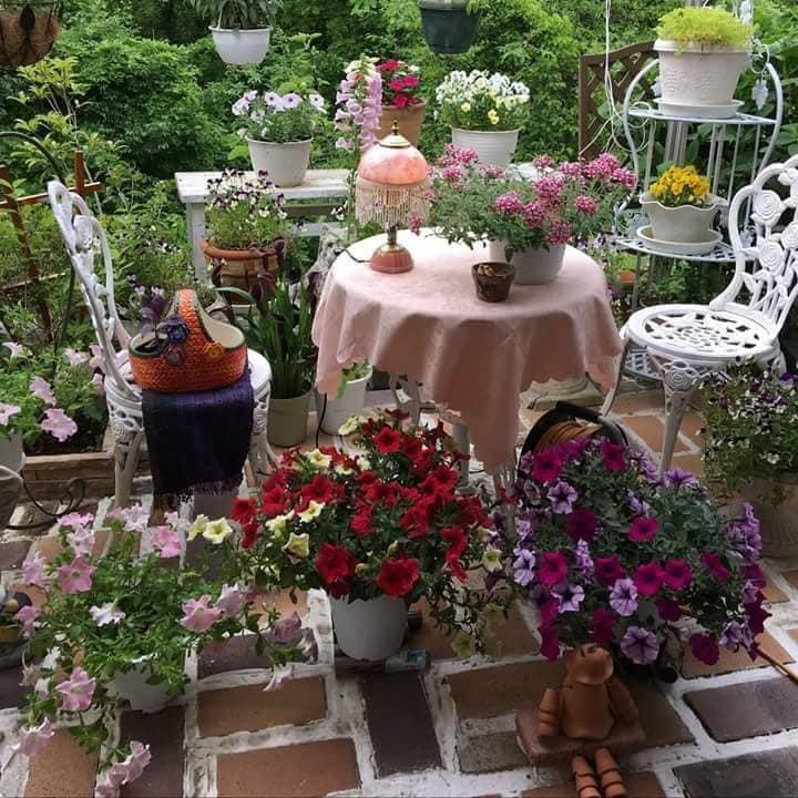 Photos de printemps/été - Page 14 39391810