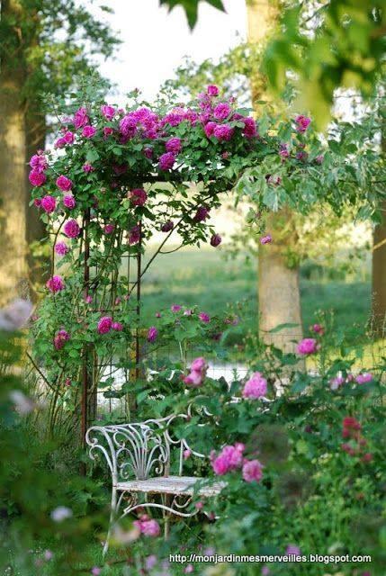 Photos de printemps/été - Page 16 41714610