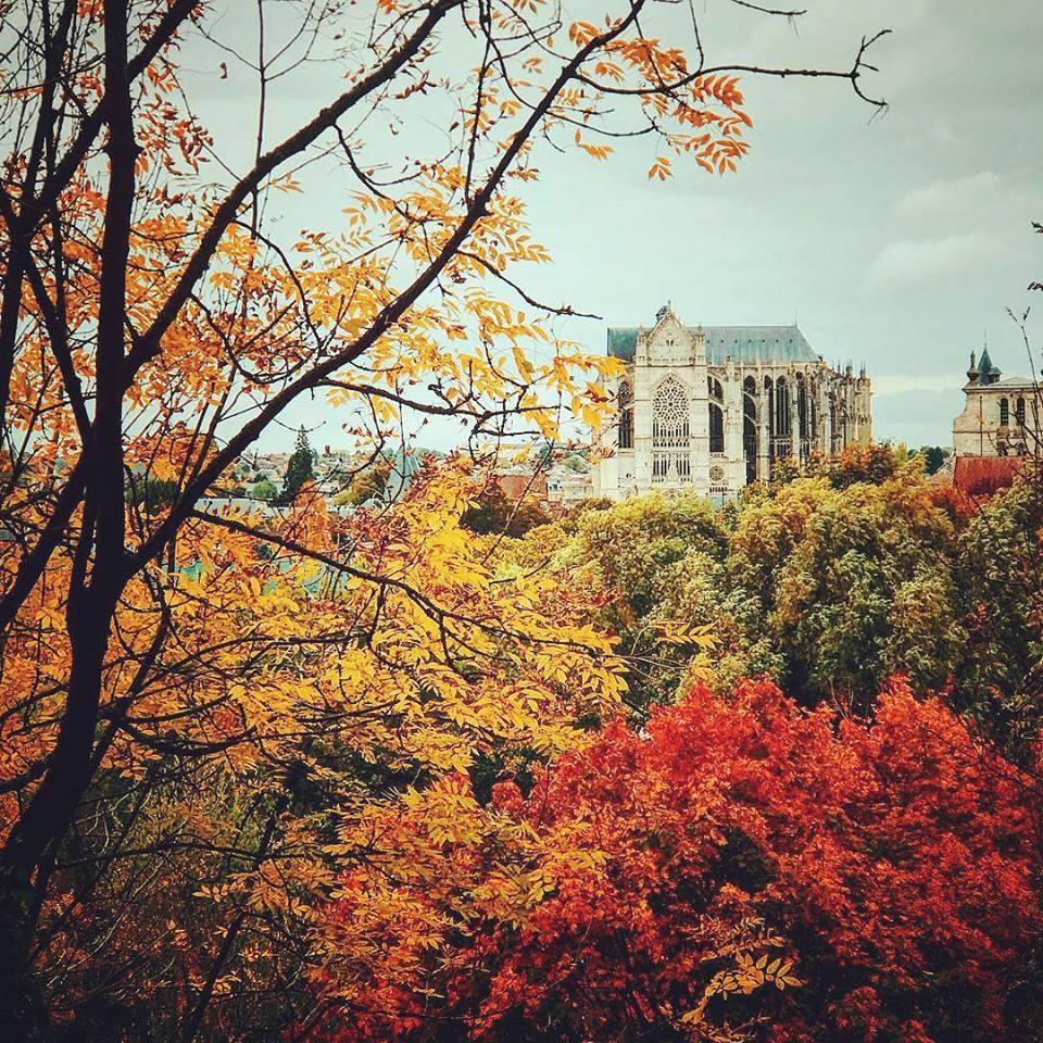 Images d'automne  - Page 5 42669910