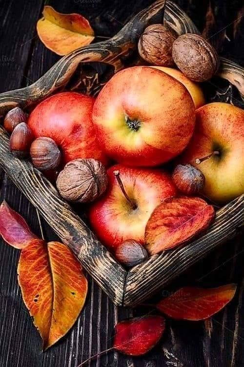 Images d'automne  - Page 2 42887310