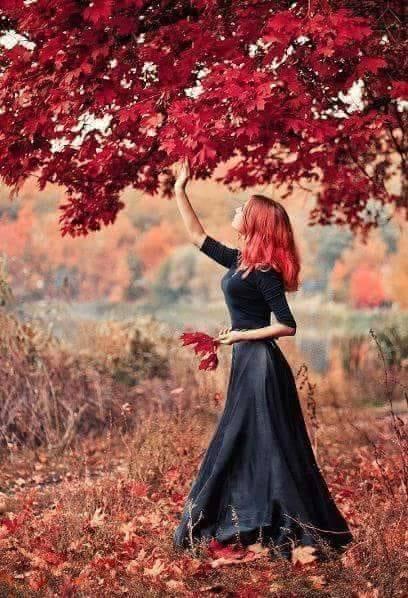 Images d'automne  - Page 2 43322910