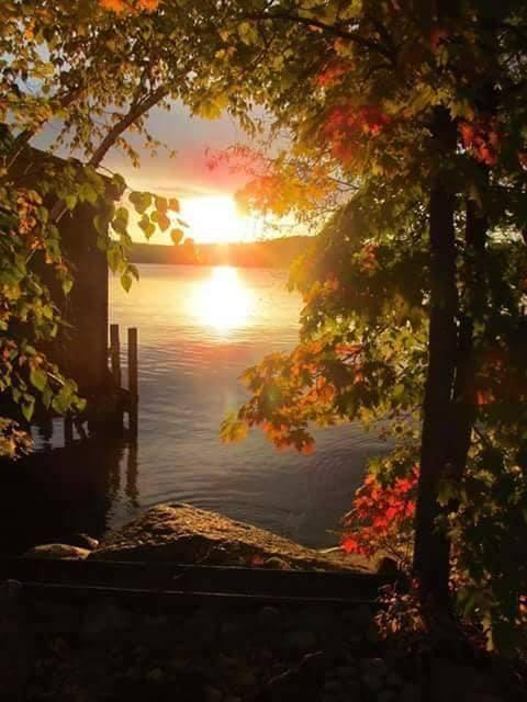 Images d'automne  - Page 2 44073010