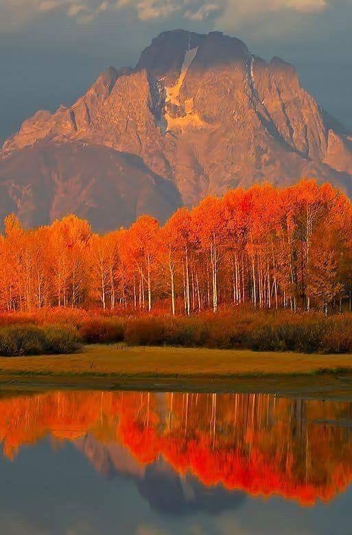 Images d'automne  - Page 3 44187110