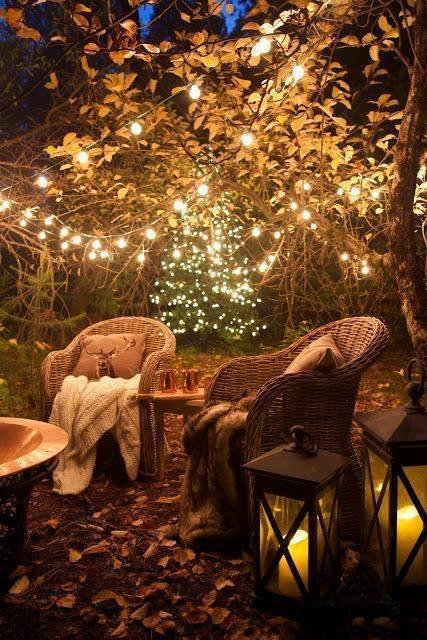 Images d'automne  - Page 5 45491510