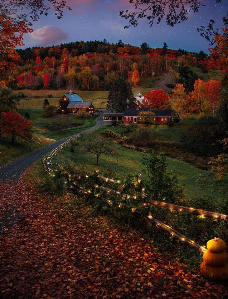 Images d'automne  - Page 5 46155710