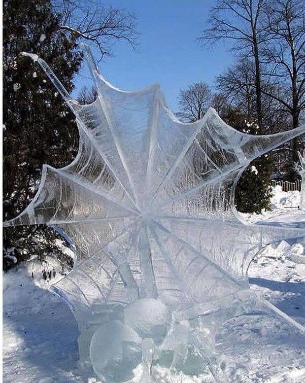 Images d'hiver - Page 3 49851910