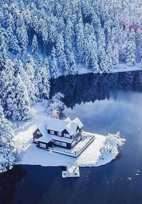 Images d'hiver - Page 3 49900410