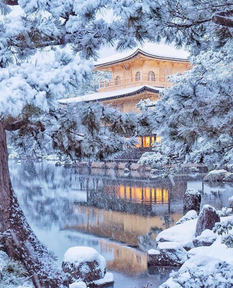 Images d'hiver - Page 3 50026110