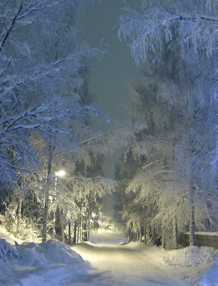 Images d'hiver - Page 3 50609810