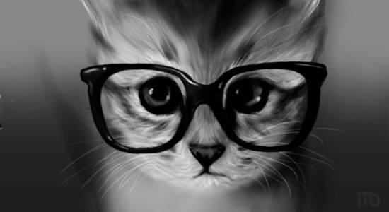 Et si les membres étaient des chats ? o.O 11988710