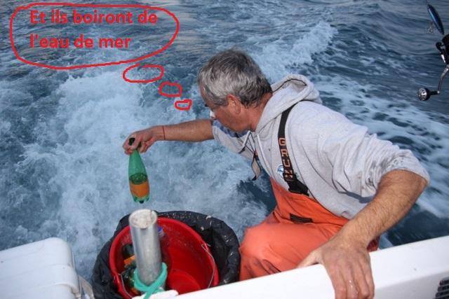 Compte rendu de notre sortie de pêche au thon 11810