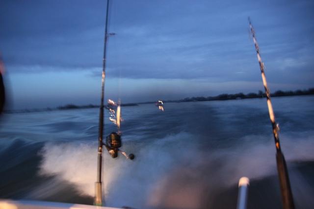 Compte rendu de notre sortie de pêche au thon Img_7519