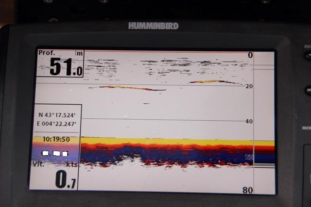 Compte rendu de notre sortie de pêche au thon Img_7611