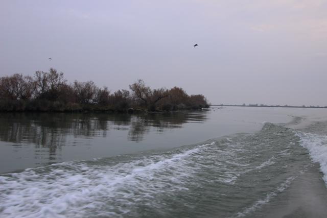 Compte rendu de notre sortie de pêche au thon Img_8120