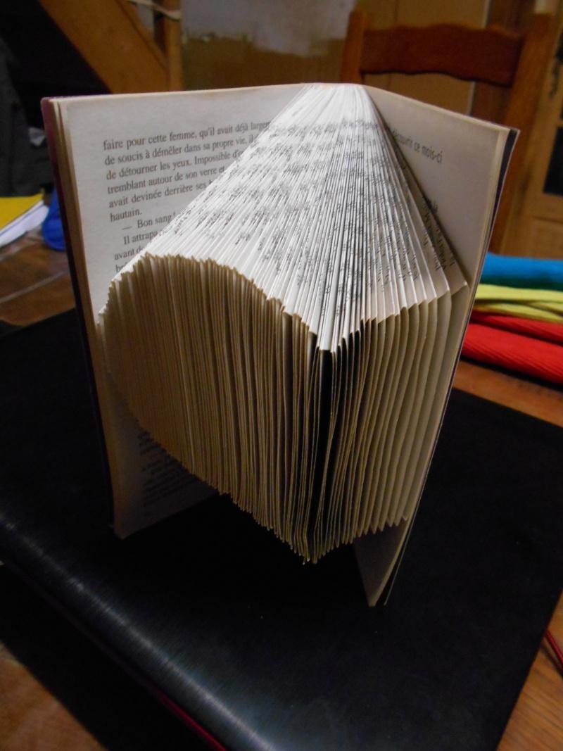 Pliage de livres Dscn0013