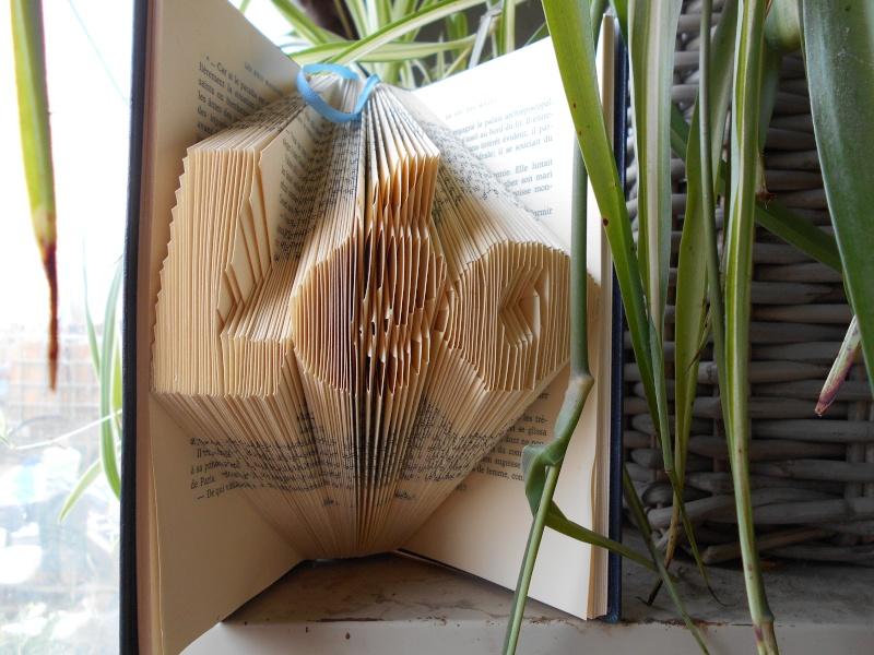 Pliage de livres Dscn0022