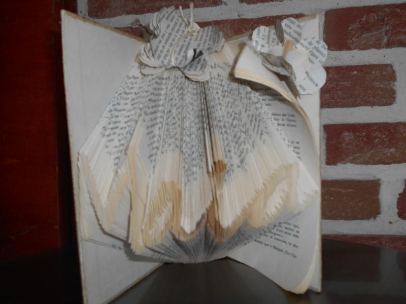 Pliage de livres Dscn0030