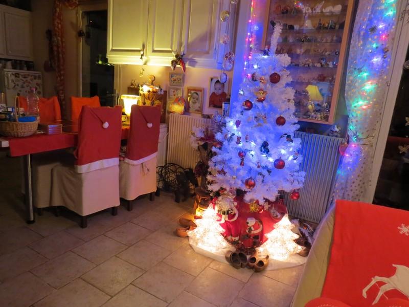 sapin de Noël  - Page 3 Img_1211