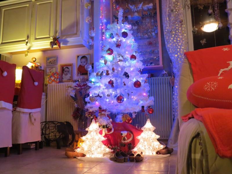 sapin de Noël  - Page 3 Img_1213