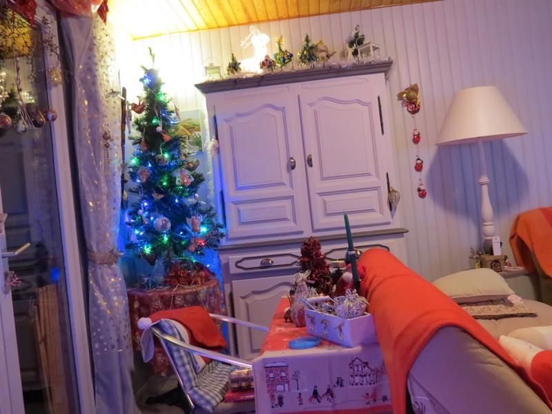 sapin de Noël  - Page 3 Img_1214