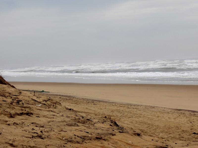 un petit tour en décembre à la mer  Img_1224