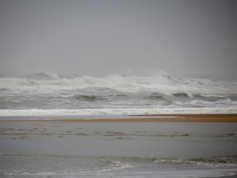 un petit tour en décembre à la mer  Img_1226