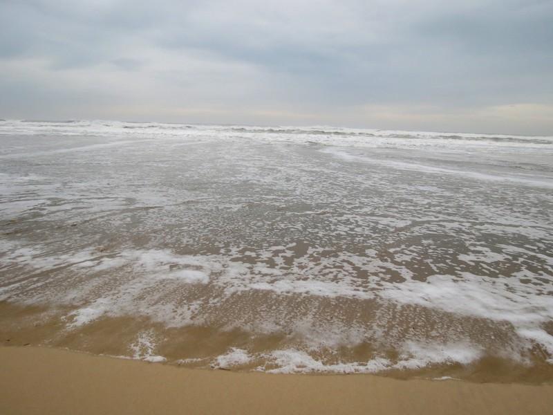 un petit tour en décembre à la mer  Img_1231