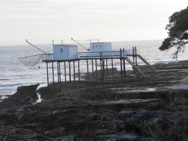 31 décembre aprés midi ensoleillé  ,la mer Img_1311