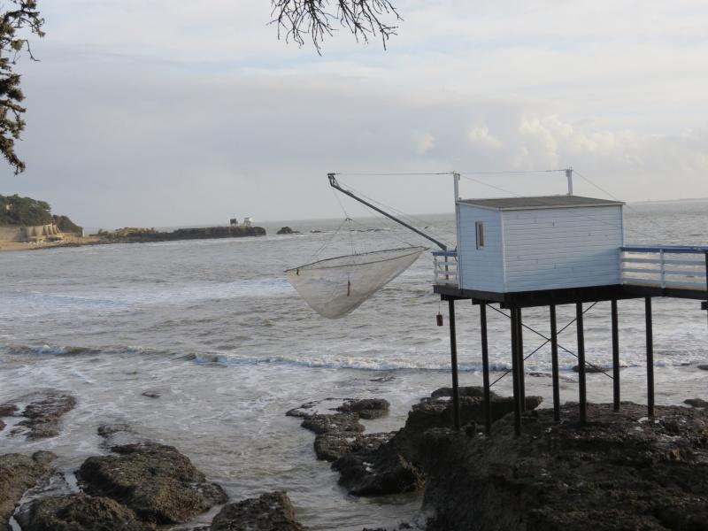 31 décembre aprés midi ensoleillé  ,la mer Img_1312