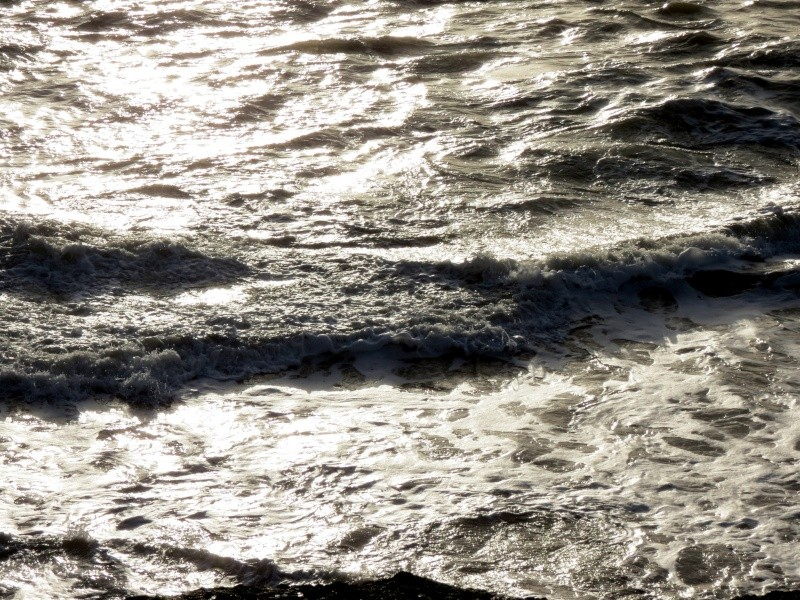31 décembre aprés midi ensoleillé  ,la mer Img_1314