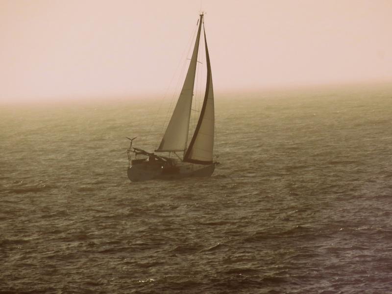31 décembre aprés midi ensoleillé  ,la mer Img_1316