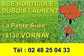 VIERZON - LE PATIO CLUB - Dancing  Vornay10