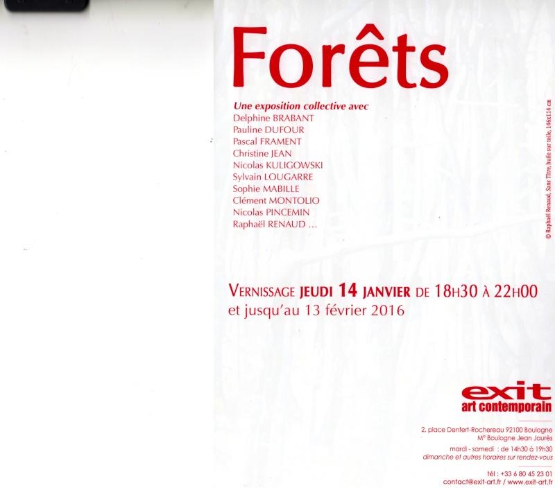 Forêts exposition Boulogne 14 janvier au 13 février 2016 Foryts10