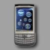 les Kiwis des differents appareils P5251010