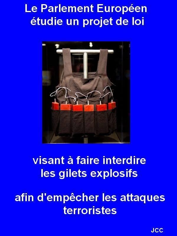 petition armes ! Gilet11
