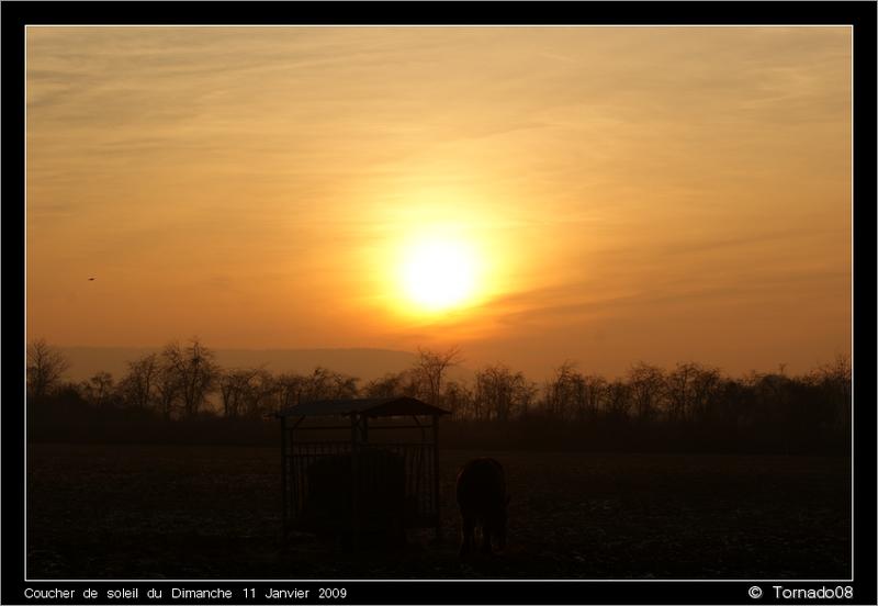 Lever/Coucher de soleil Dsc00217
