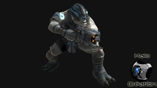 Ennemis de Halo Reach (Covenants/Elites/Grunts/Brutes/Hunters/Moa/Gueta) - Page 24 1216