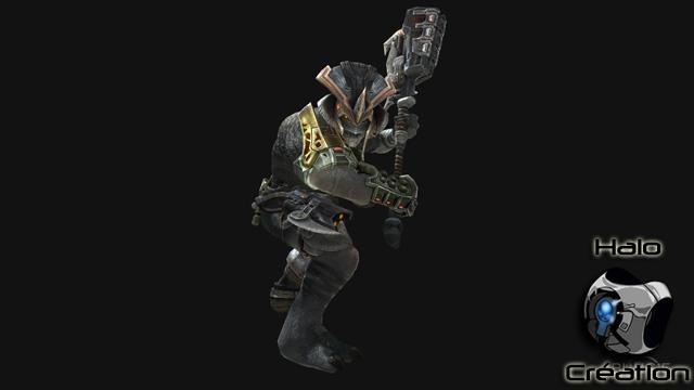 Ennemis de Halo Reach (Covenants/Elites/Grunts/Brutes/Hunters/Moa/Gueta) - Page 24 1218