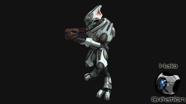 Ennemis de Halo Reach (Covenants/Elites/Grunts/Brutes/Hunters/Moa/Gueta) - Page 24 1221